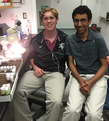 Myles Hagney '17 and Arjun Rajan '17 at the fly station in Kim's Stanford lab during the 2016 internship program.