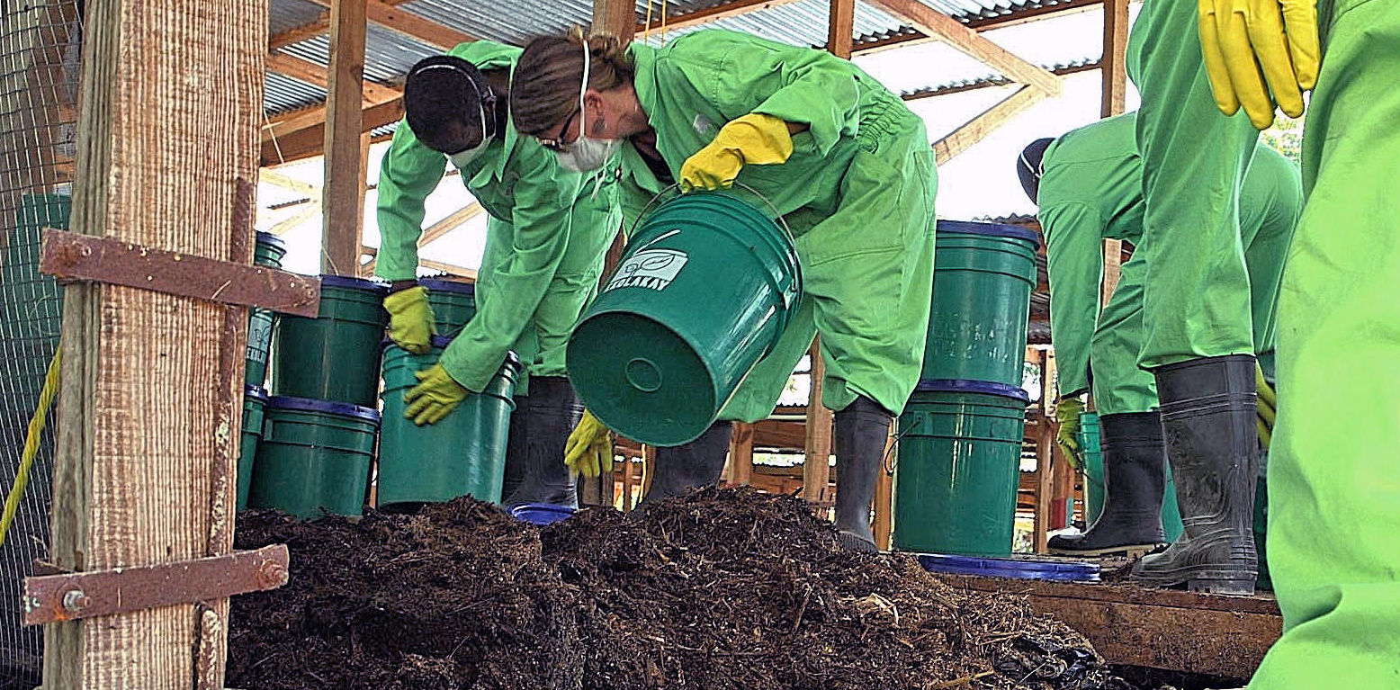 Sasha Kramer distributing compost with pails alongside colleagues