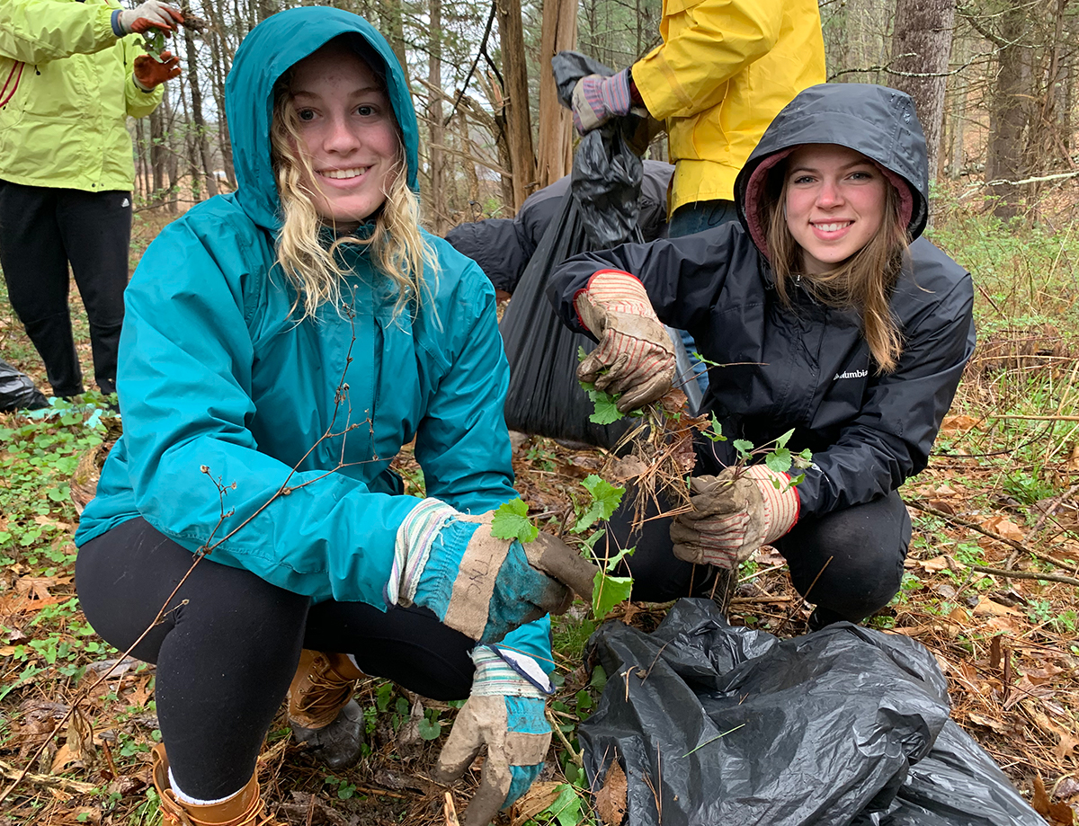 Exeter students in the woods clearing weeds.