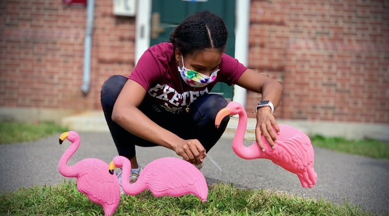 A student tends to plastic flamingoes on the Brancroft dorm lawn.